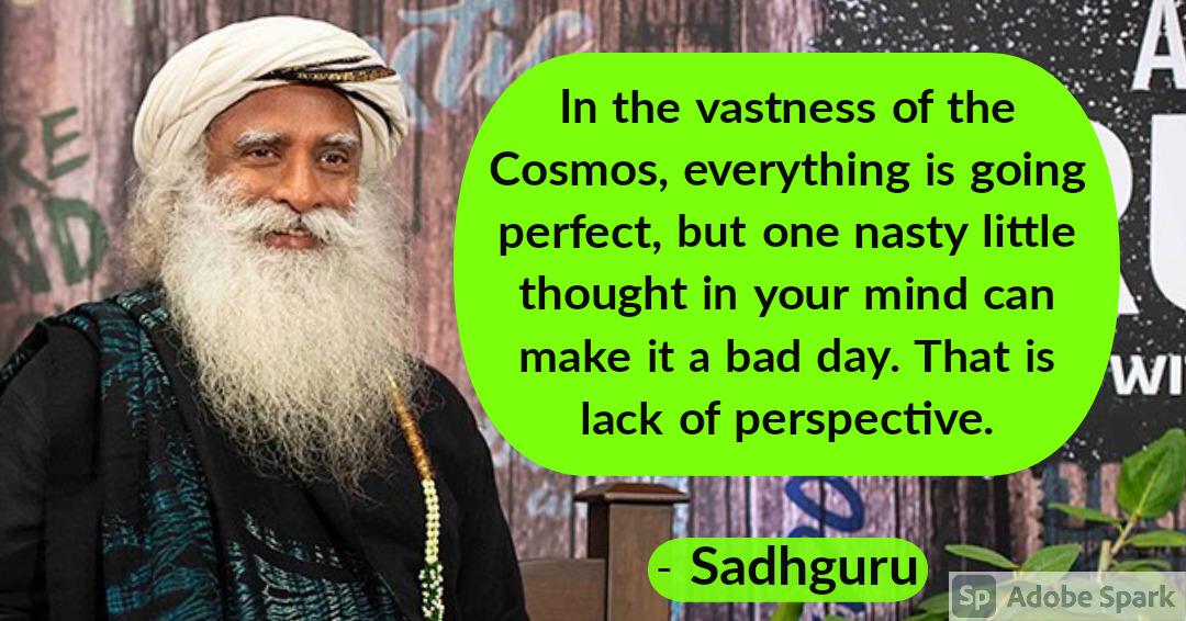 15. Sadhguru Quotes