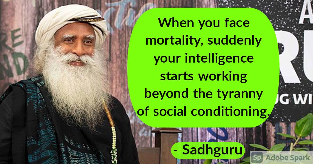 20. Sadhguru Quotes