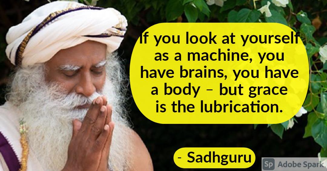 25. Sadhguru Quotes